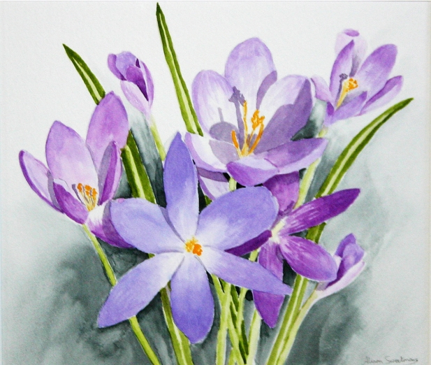Alison Sweetman - 'Crocuses'