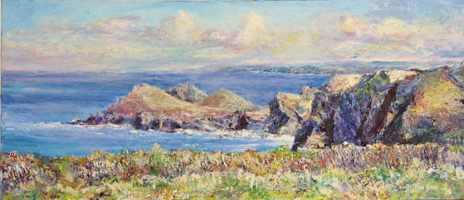 Mike Green - 'The Rumps, North Cornwall'